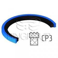 Уплотнение поршня CP3 МПИ-АГРО TM Ringroup