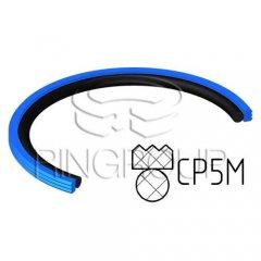 Уплотнение поршня CP5 МПИ-АГРО TM Ringroup