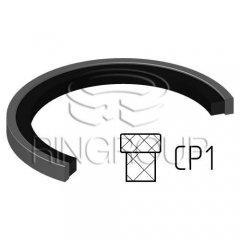 Уплотнение поршня CP1 МПИ-АГРО TM Ringroup