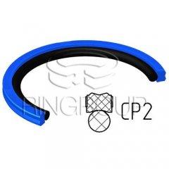 Уплотнение поршня CP2 МПИ-АГРО TM Ringroup