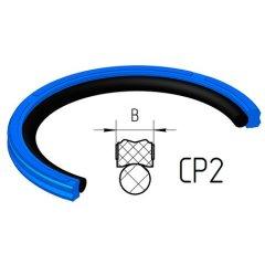 Piston seals CP2