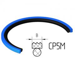 Piston seals CP5M