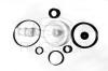 Ремкомплект ускорительного клапана с пластмассой 36РП (74031)